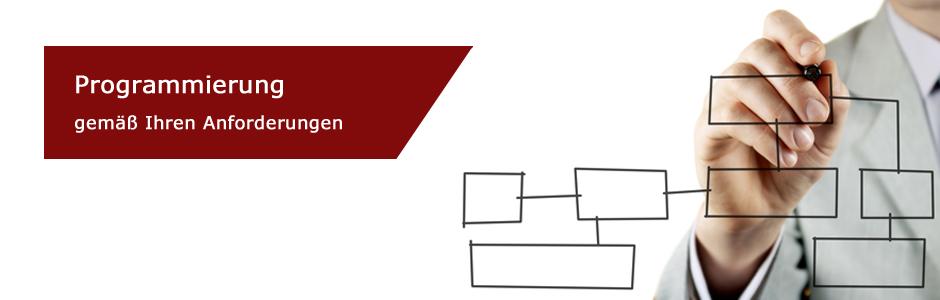 Organigramm.jpg
